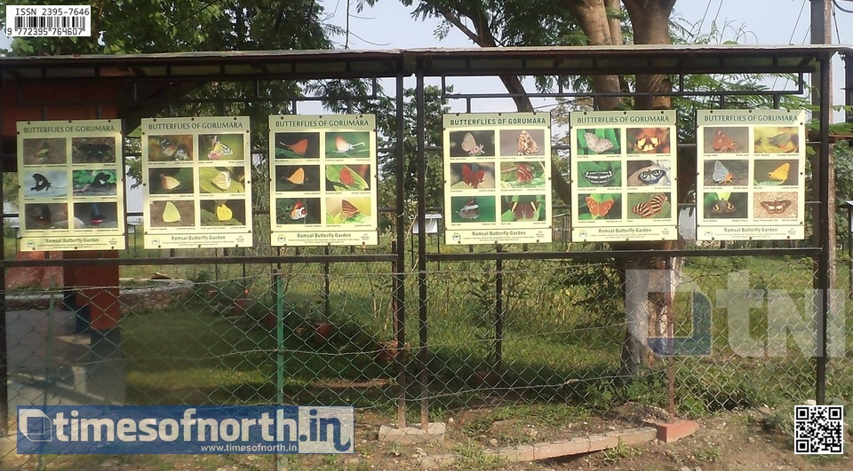 The Butterfly Conservatory at Ramshai, Gorumara, A Lifetime Experience