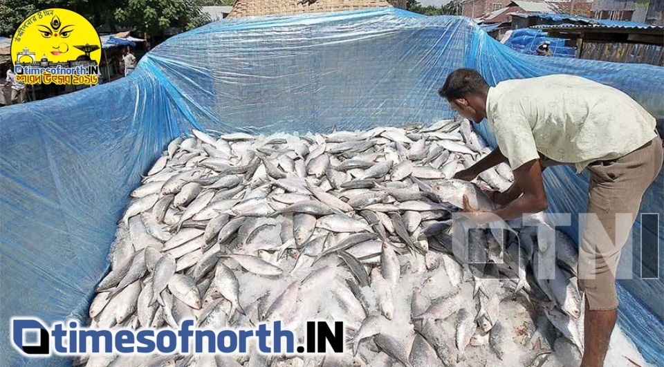 HILSA PRICE EXPECTED TO COME DOWN TO RS. 200 PER KG AT SILIGURI SOON